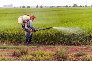 Facts About Pesticides